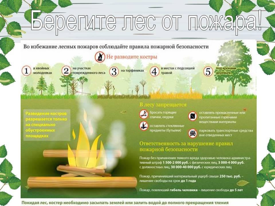 34-обеспечение пожарной безопасности в лесу.jpg